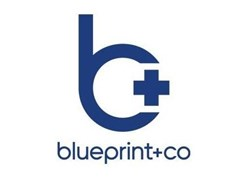 blueprint and co - Logo